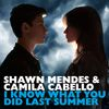 I Know What You Did Last Summer by Camila Cabello / Shawn Mendes
