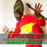 Anthony B - The Best of Shashamane Reggae Dubplates (Explicit)