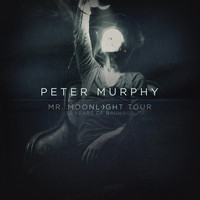 Peter Murphy - Mr. Moonlight Tour - 35 Years of Bauhaus