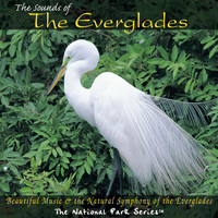 Dan Higgins - The Sounds of the Everglades