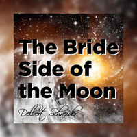 Delbert Schneider - The Bride Side of the Moon