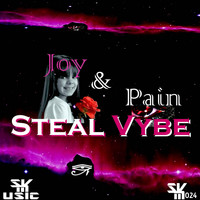 Steal Vybe - Joy & Pain