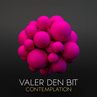 Valer den Bit - Contemplation