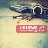 Self Explanatory - Voice Recognition