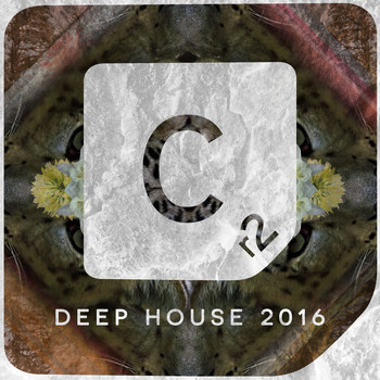 Various Artists - Deep House 2016