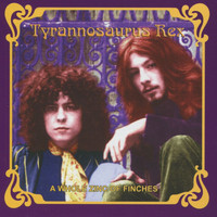 Tyrannosaurus Rex - A Whole Zinc of Finches