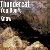 Thundercat - You Don't Know