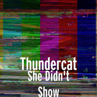Thundercat - She Didn't Show