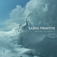 Sasha Primitive - Anytime You Want It / Let Go