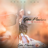 Wayne Marshall - Give Praises - Single