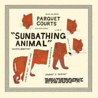 Parquet Courts - Sunbathing Animal + Content Nausea
