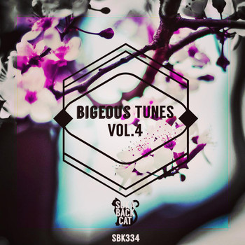 Various Artists - Bigeous Tunes, Vol. 4