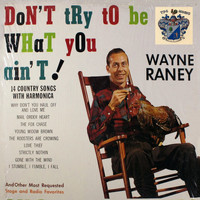 Wayne Raney - Don't Try to Be What You Ain't
