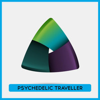 Various Artists - Psychedelic Traveller 2009