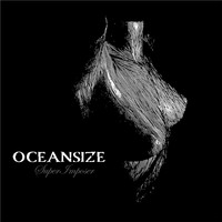 Oceansize - Superimposer - Single