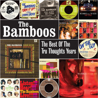 The Bamboos - The Best of the Tru Thoughts Years
