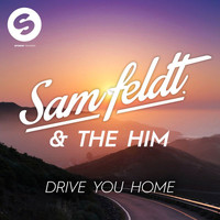 Sam Feldt - Drive You Home