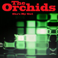 The Orchids - She's My Girl