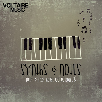 Various Artists - Synths and Notes 25