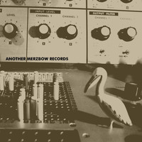 Merzbow - Another Merzbow Records