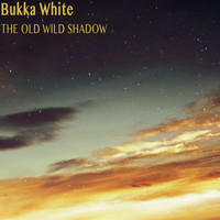 Bukka White - The Old Wild Shadow
