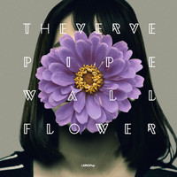 The Verve Pipe - Wallflower - Single