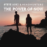 Steve Aoki & Headhunterz - The Power of Now (Crystal Lake Remix)