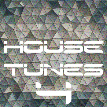 Various Artists - House Tunes, Vol. 4