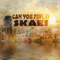 Skaei - Can You Feel It