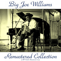 Big Joe Williams - Remastered Collection