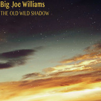 Big Joe Williams - The Old Wild Shadow
