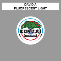 David A - Fluorescent Light