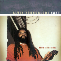 Alvin Youngblood Hart - Down in the Alley