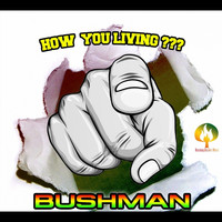 Bushman - How You Living