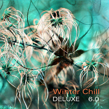Various Artists - Winter Chill Deluxe 6.0