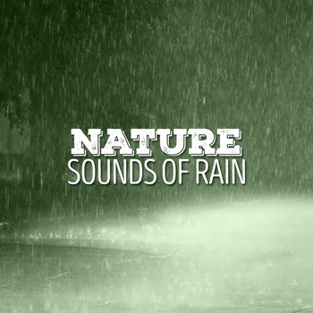 Nature and Weather Sound Effects