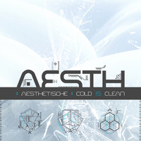 Aesthetische - Cold Is Clean