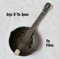 Tim O'brien - Origin Of Species