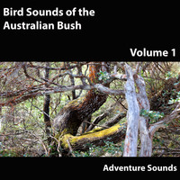 Adventure Sounds - Bird Sounds of the Australian Bush, Vol. 1