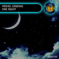 Mishel Gineras - One Night