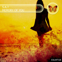 S.A.T - Memory of You (Chillout Mix)