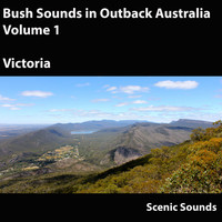 Scenic Sounds - Bush Sounds in Outback Australia, Vol. 1
