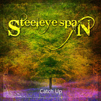 Steeleye Span - The Essential Steeleye Span: Catch Up