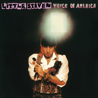Little Steven - Voice Of America