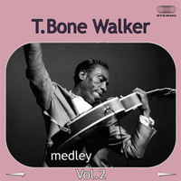 T-Bone Walker - T-Bone Walker Medley 2: I Got the Blues Again / Wanderin' Heart / News for My Baby / When the Sun Go