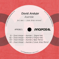 David Andujar - Asemble