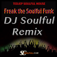 Tedjep Soulful House - Freak the Soulful Funk (DJ Soulful Remix)