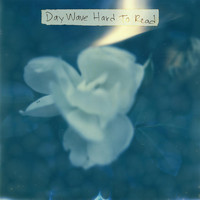 Day Wave - Hard to Read