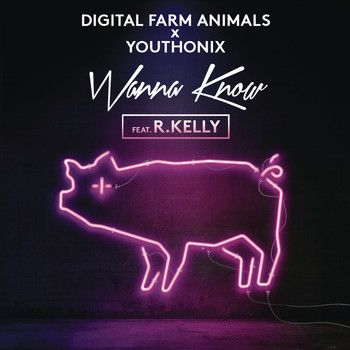 Digital Farm Animals x Youthonix feat. R. Kelly - Wanna Know