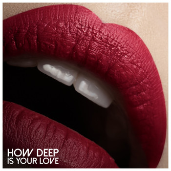 Various Artists - How Deep Is Your Love